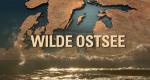 Wilde Ostsee – Bild: arte/Doclights