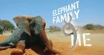 Unter Elefanten – Überleben in der Herde – Bild: BBC