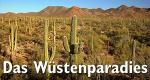 Das Wüstenparadies – Bild: ZDF/Getty Images