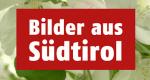 Bilder aus Südtirol – Bild: 3sat/ORF