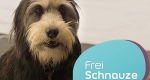 Frei Schnauze – Das Tiermagazin – Bild: BR