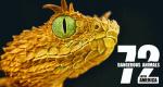 72 Dangerous Animals: Latin America – Bild: Netflix/Showrunner Productions