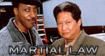 Martial Law - Der Karate-Cop