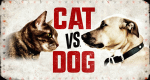 Cat vs. Dog – Die Tiertherapie – Bild: Animal Planet