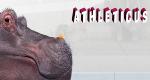 Athleticus – Bild: arte
