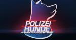 Polizeihunde – Bild: ATV