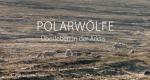 Polarwölfe – Bild: arte/NDR