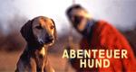 Abenteuer Hund – Bild: DOCMA TV Produktion GmbH