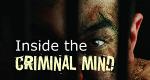 Inside the Criminal Mind – Bild: Big Media/KM Plus Media