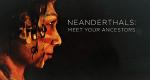 Der Neandertaler in uns – Bild: BBC