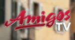 Amigos-TV – Bild: Deutsches Musik Fernsehen