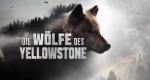 Die Wölfe des Yellowstone – Bild: National Geographic Channel