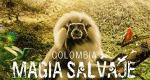 Kolumbien – Bild: Holey and Moley