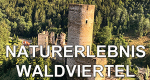 Naturerlebnis Waldviertel – Bild: ZDF/ORF