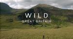 Wildes Großbritannien – Bild: Magnify Media/Screenshot