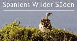 Spaniens wilder Süden – Bild: arte/Bernhard Rübe