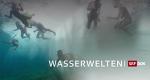 Wasserwelten – Bild: SRF
