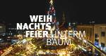 Weihnachtsfeier unterm Baum – Bild: WDR