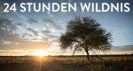 24 Stunden Wildnis – Bild: Offspring Films