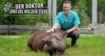 Der Doktor und die wilden Tiere – Bild: HR