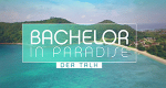Bachelor in Paradise – Der Talk – Bild: TVNOW