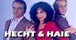 Hecht & Haie