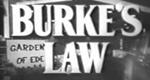 Amos Burke
