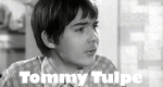 Tommy Tulpe