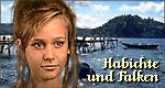 Habichte und Falken