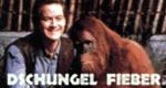 Dschungel Fieber