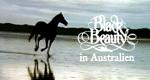 Black Beauty in Australien