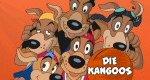 Kangoos – Fit für Basketball!