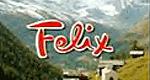 Felix – ein Freund fürs Leben