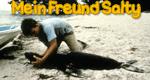 Salty, der Seelöwe – Bild: ZDF/Centerpoint Films B.V.