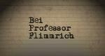 Bei Professor Flimmrich