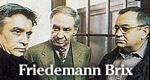 Friedemann Brix