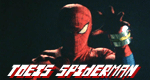 Toei's Spiderman