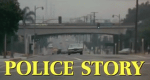 Police Story - Immer im Einsatz