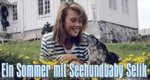 Ein Sommer mit Seehundbaby Selik