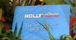 Hollymünd